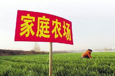 [转载]补贴优惠众多 家庭农场迎来致富商机