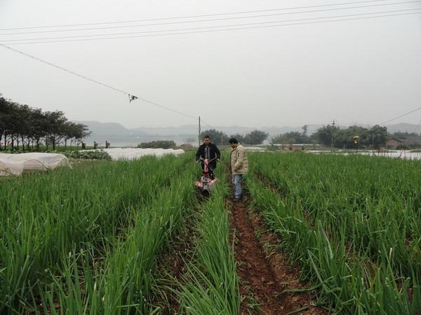 我国农业机械化整体推进快速发展